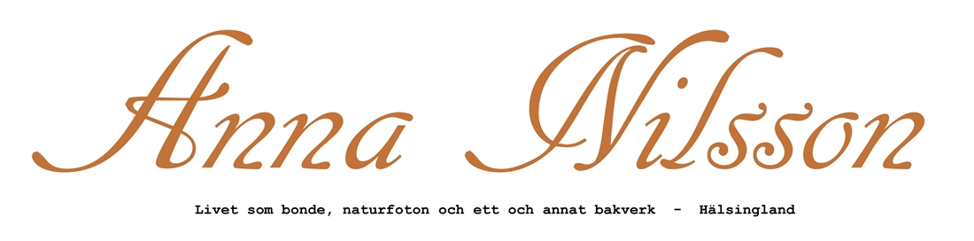- Anna -
