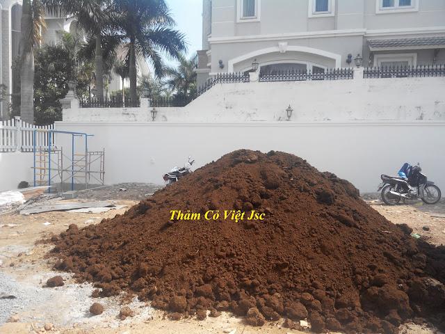 cung cấp đất màu trồng cây