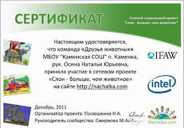 Итоги участия в сетевом проекте 2011