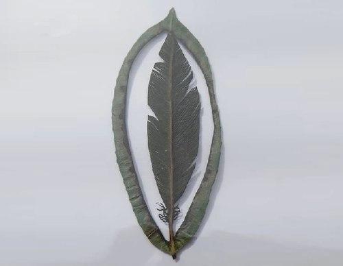 lá đỏ,cây lá và gió, lá số tử vi,  lá thúi địch
