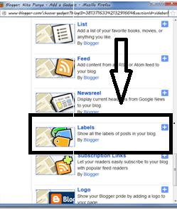 Cara Memasang Categori di Blogspot