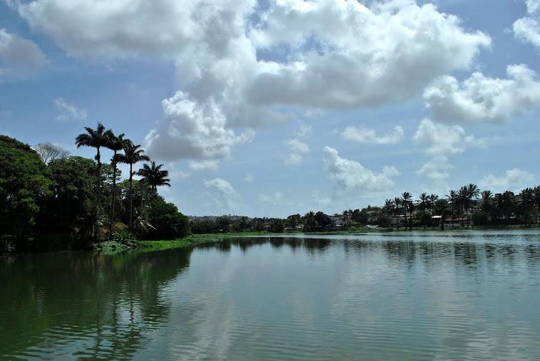 Açude de Apipucos. Recife zona Norte