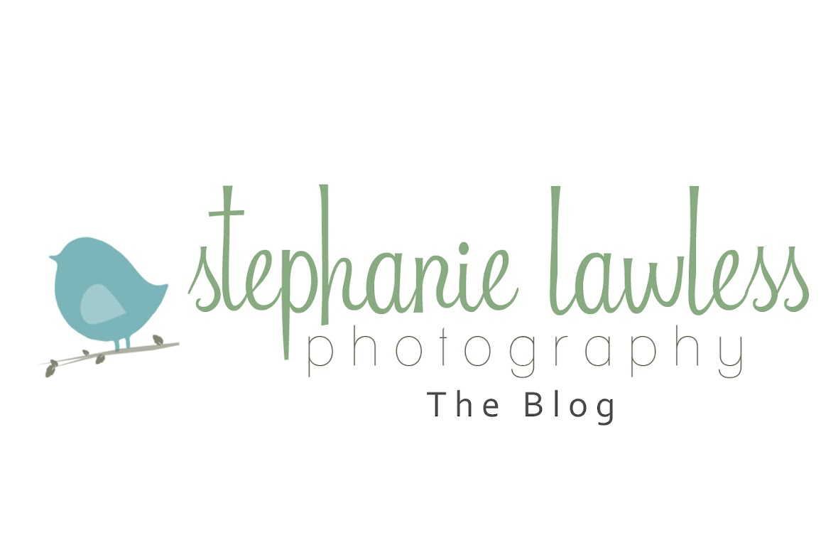 Stephanie Lawless Photography