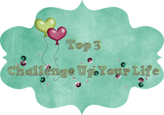 07/2017 Top 3 bei Challenge up your life