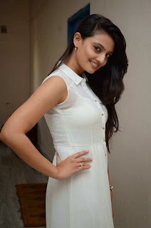 Actress Nikitha Narayan Picture Gallery in White Dress at Ladies and Gentleman Movie Press Meet 8.JPG