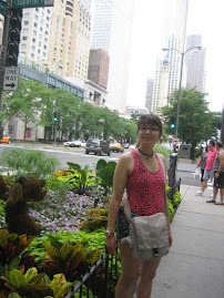 Family Trip to Chicago - July 2012