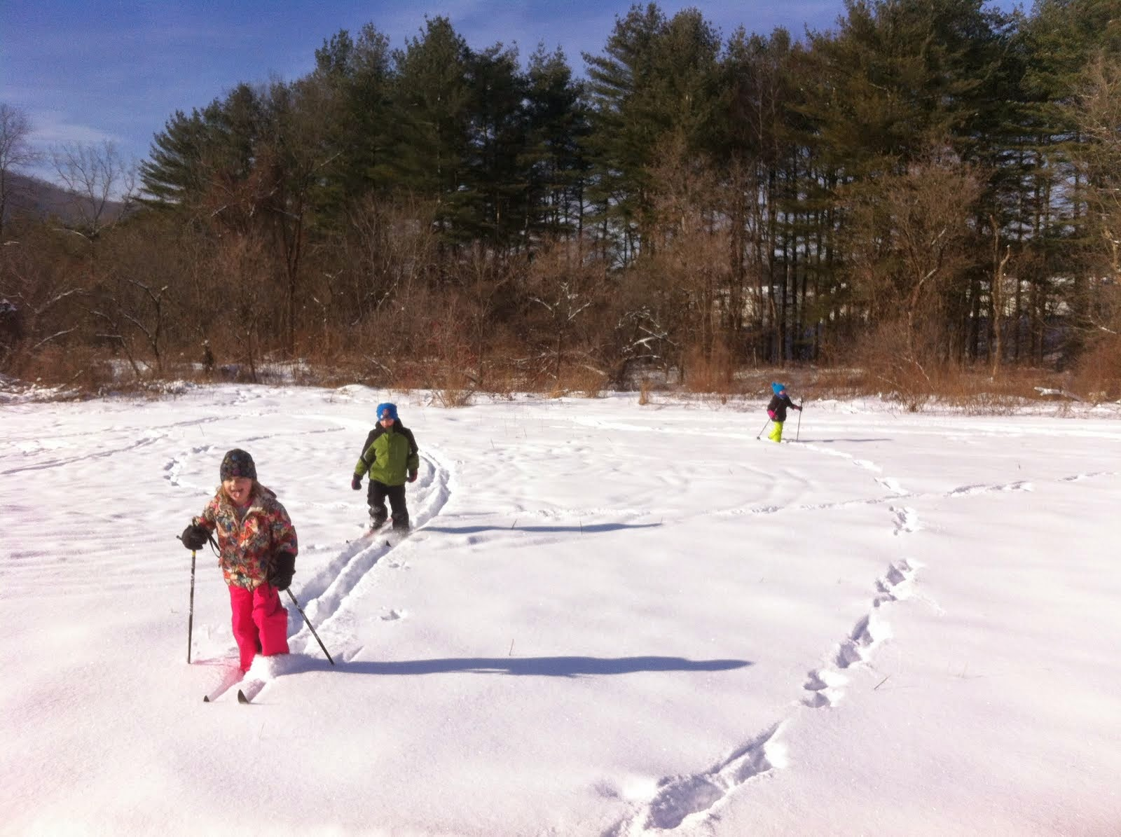 Cross Country Skiing is now on Thursdays from 12-1:00!