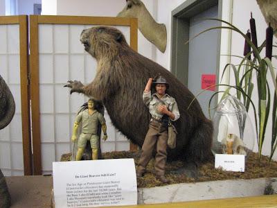 Giant Beaver