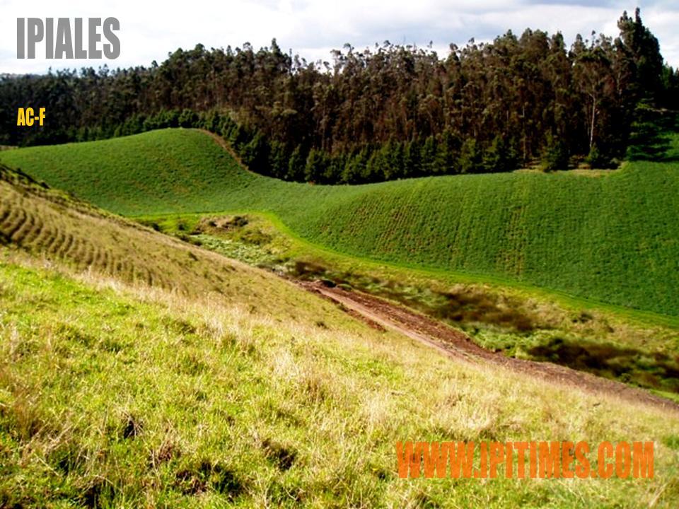La agricultura usos del suelo en colombia for 4 usos del suelo en colombia