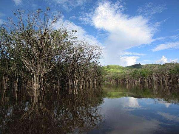 Taman Wisata Danau Sentarum Kalimantan 3