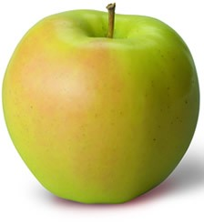 gingergold apple