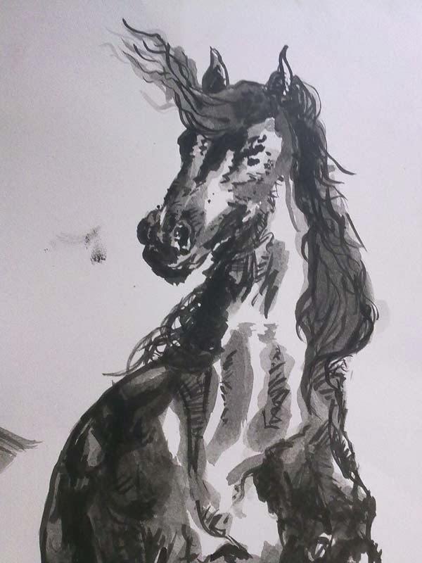 aguada de tinta torso de caballo