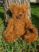 Augustus Allen Bear Cub
