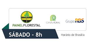 Painel Florestal TV