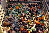 Metade da comida do mundo vai parar no lixo, diz relatório