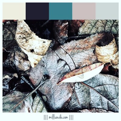 III milliande de III Earthed Trend Moodboard Textile Design and Surface Pattern Color Palettes