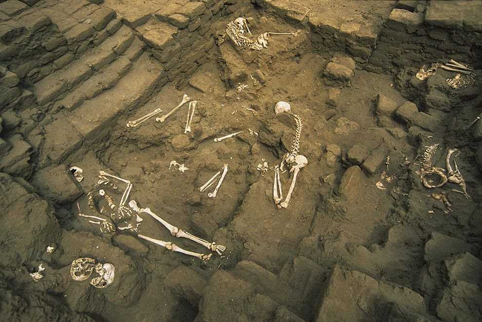 New clues about human sacrifices at ancient Peruvian temple