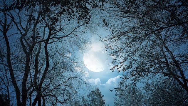Fotos Noches de Luna llena
