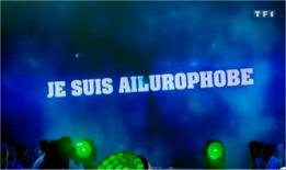 capture d'écran vidéo Secret Story sur TF1