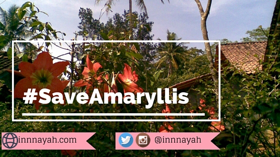 saveAmaryllis, piknik, traveling, trip, attitude, etika, bunga, amarilis, instagram, social media, etika piknik, foto