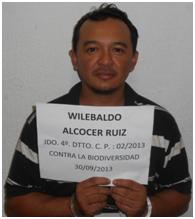 PGR detiene a pepinero Alcocer Ruiz