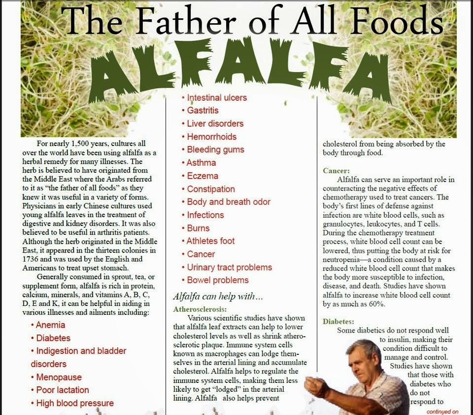 alfalfa shaklee penang