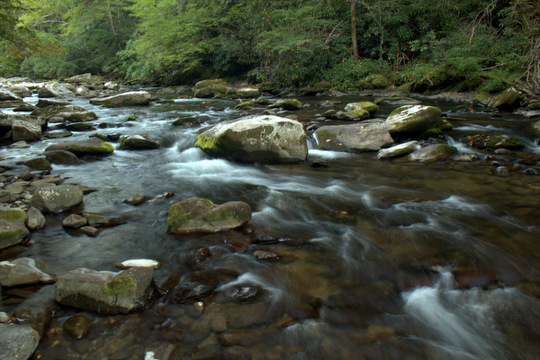 Little River in the Great Smoky Mountains National Park