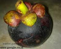Kulit Manggis untuk Powerful Anti-inflammatory (Anti Peradangan)