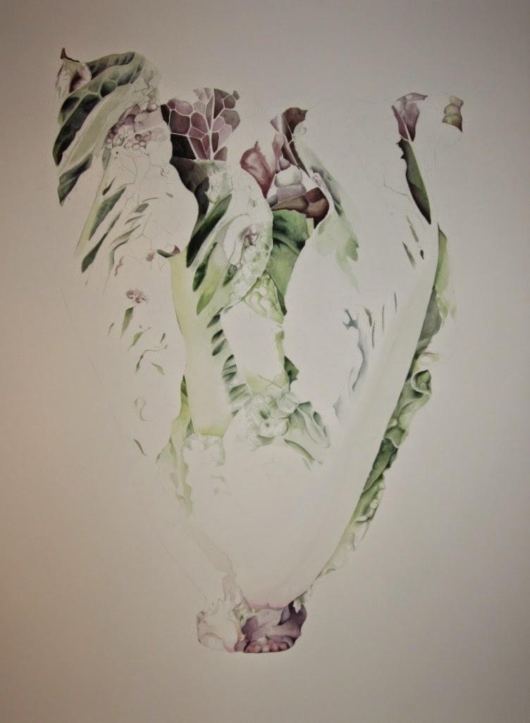 Lettuce by Jessica Shepherd