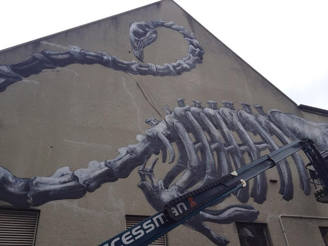 Work In Progress by ROA For Rise Street Art Festival In Christchurch, New Zealand. 2