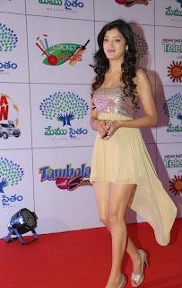 Actress Richa Panai Latest  Pictures at Memu Saitam Dinner with Stars Red Carpet  20.jpg