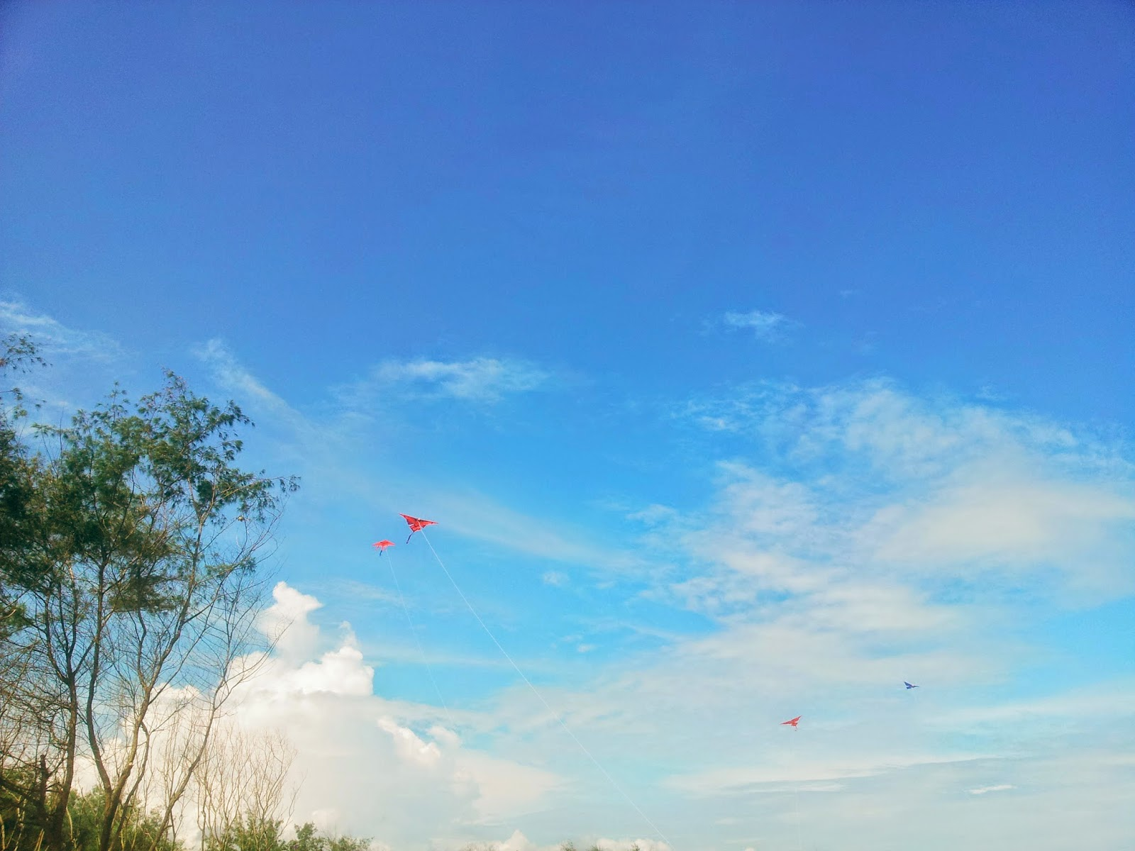 Kites on the sky of Kwaru the beach in Bantul, Jogja
