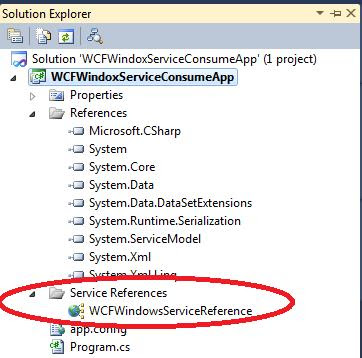 wcf windows service in explorer