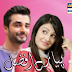 Pyaray Afzal (Episode 13th) 26th Bebruary 2014 ARY Digital