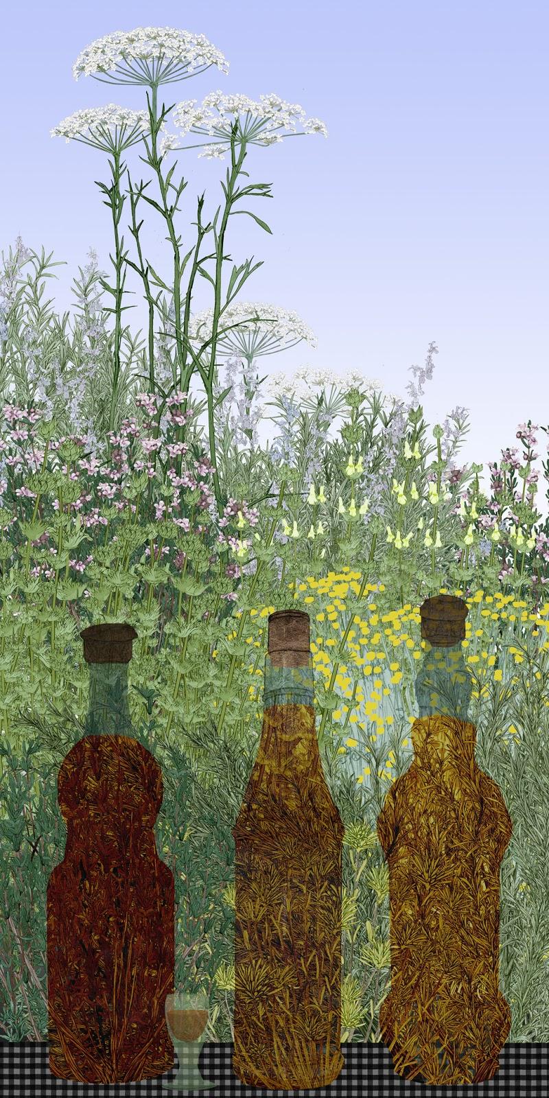 botellas herbero, tomillo, anis, rabo de gato, poleo amargo, dibujo