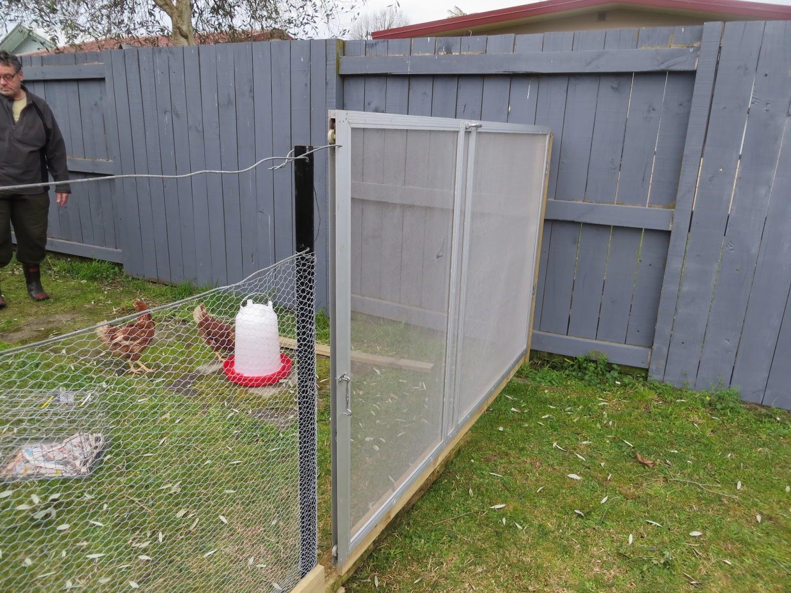 Keeping Chickens NZ