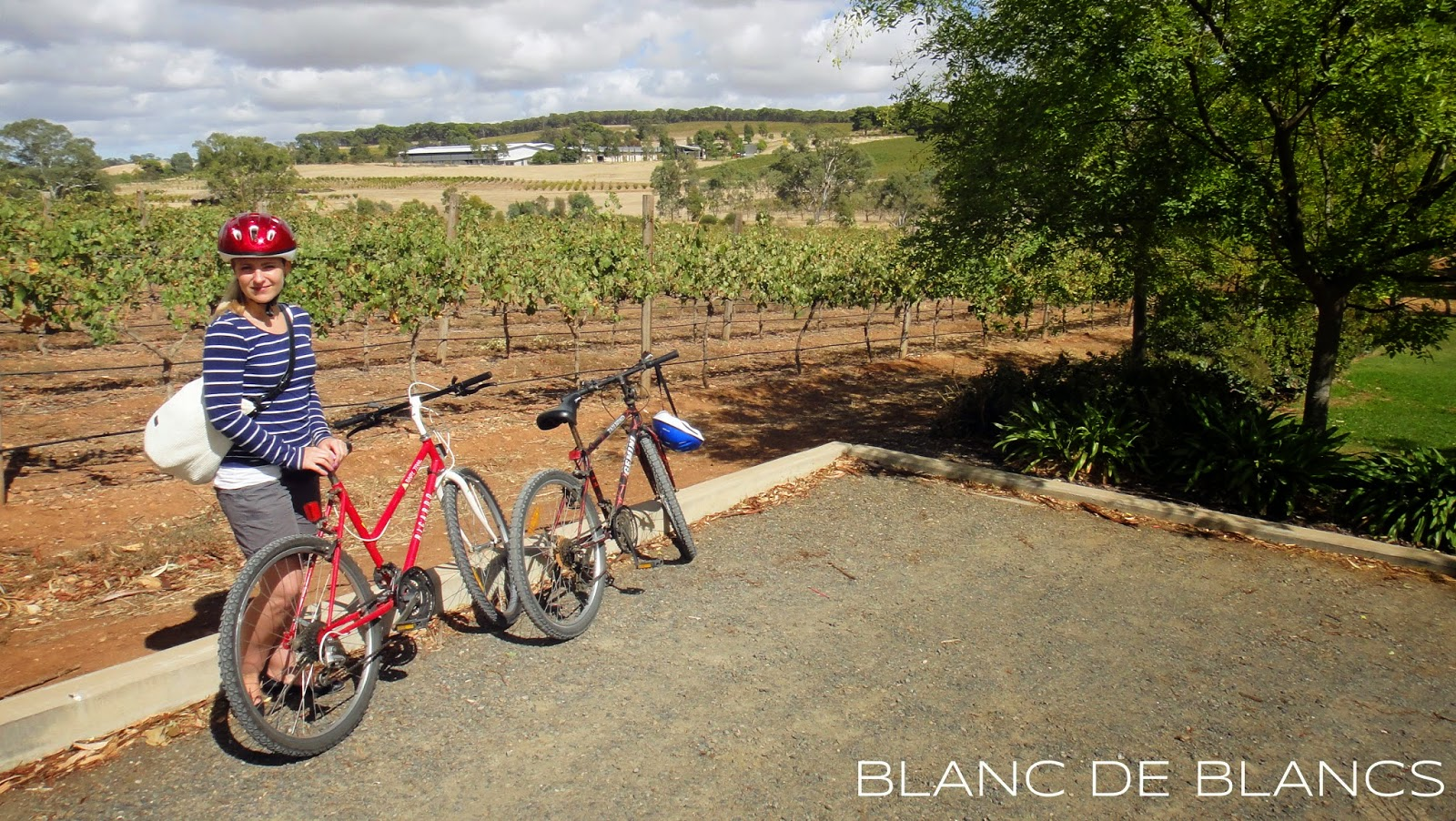 Viinimatkalla Barossa Valleyssa - www.blancdeblancs.fi