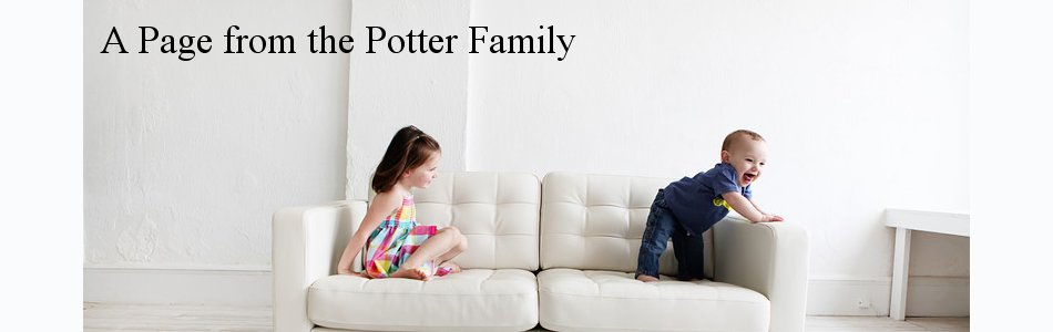 A Page from the Potter Family