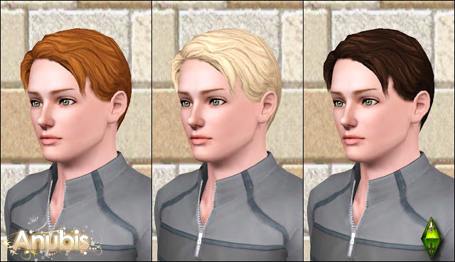 The Sims Medieval Male Hairs Set by Anubis360 AmHairMedRightPart_2