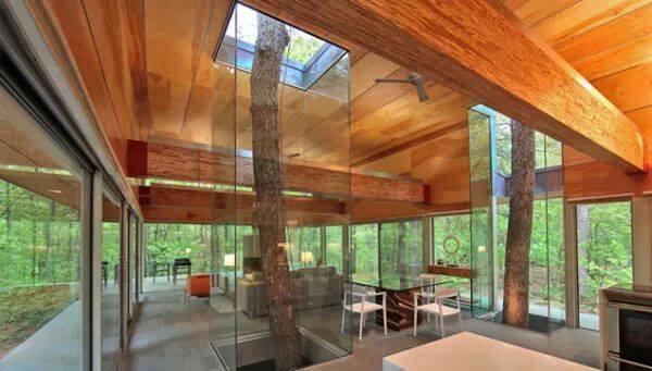 Pohon di tengah ruangan di beri pengaman kaca