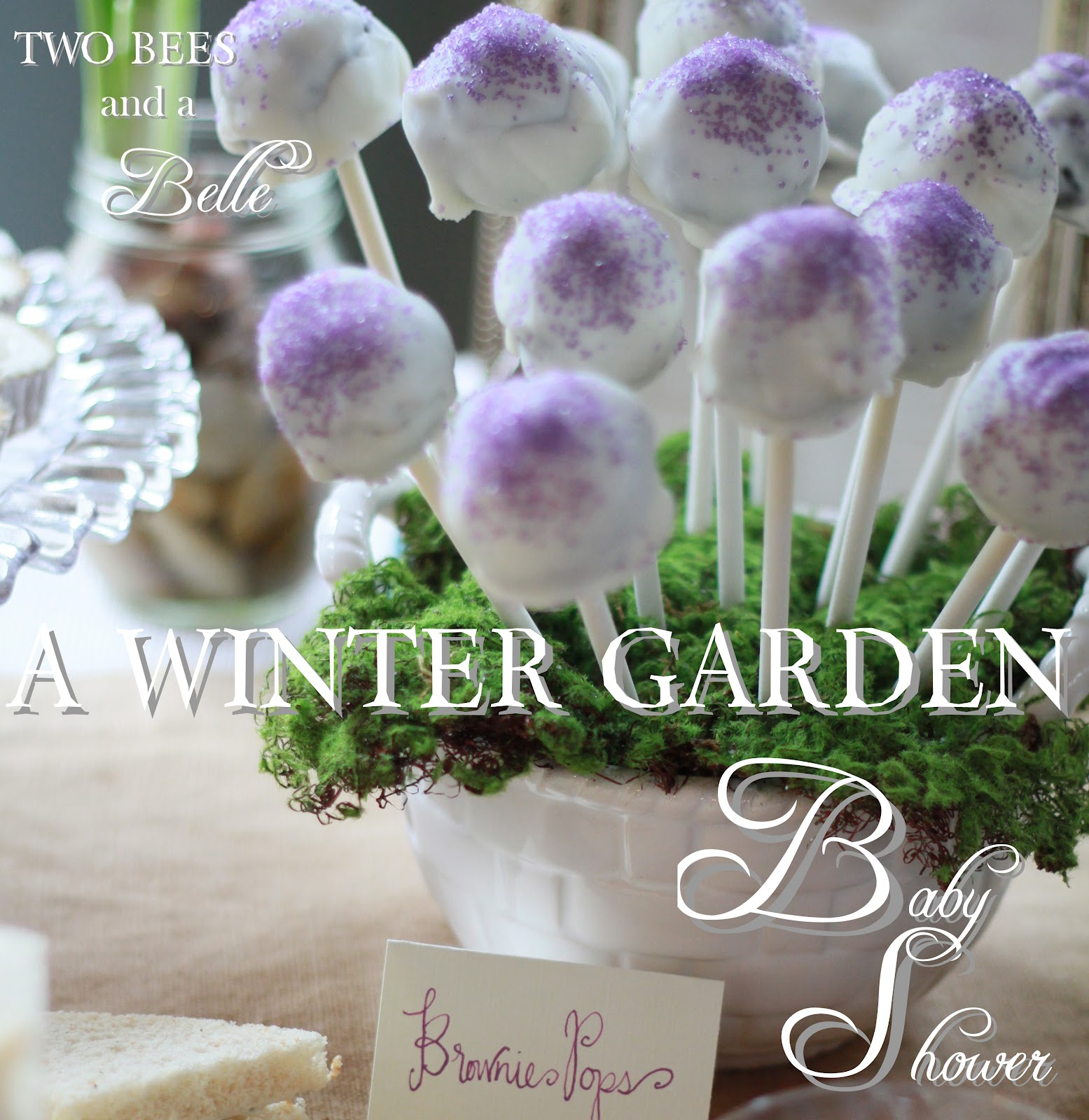 two bees and a belle a winter garden themed baby shower