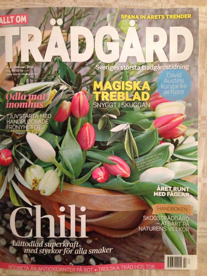 Reportage från vår trädgård i senaste numret!
