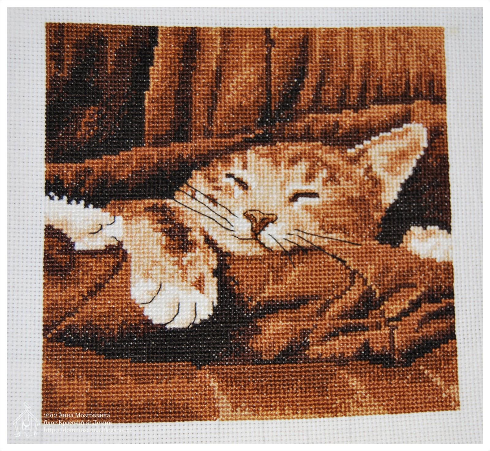 спящий котенок вышивка