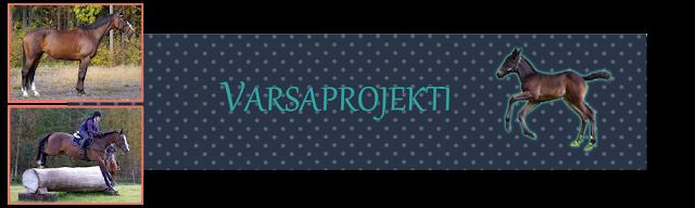 http://varsaprojekti.blogspot.fi/