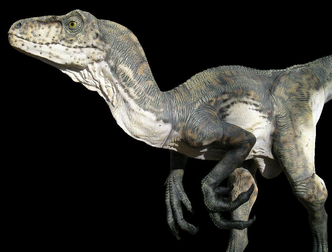 Ressources Photoshop Dinosaures Png