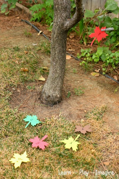An alphabet leaf hunt, hands on preschool learning for fall