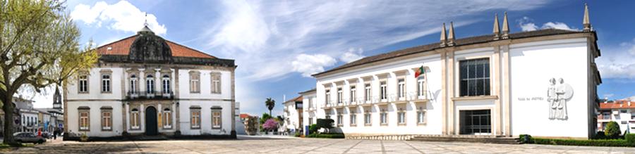 AEViVer - Associação Empresarial de Vila Verde