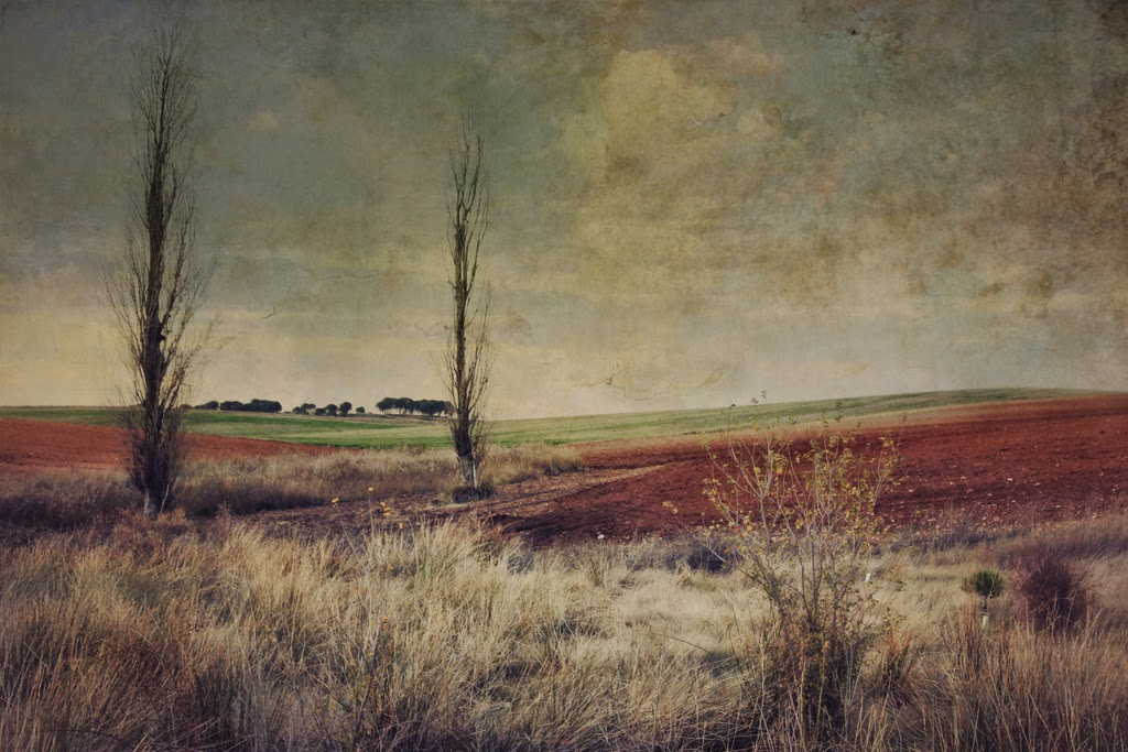 landscape,art Photo, contemporary art, new painting, Lopez Moral, pictorialism, contemporary art, paisaje