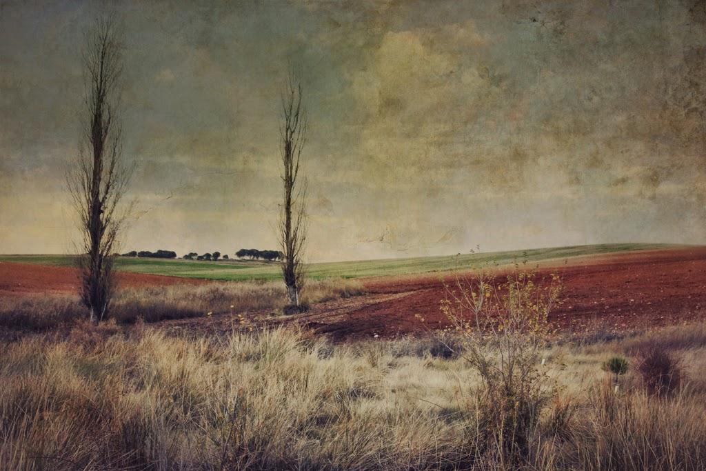 landscape,art Photo, contemporary art, new painting, Lopez Moral, pictorialism, contemporary art, paisaje