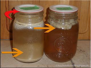 4ever Recap reusable canning lid seal failures